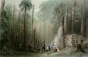A First Settlement - Bartlett, W. H.